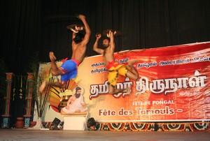களரி - ரவீந்திரன் சிறினிவாசன்